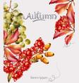 autumn flowers bouquet card watercolor vector image vector image