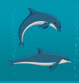 cartoon dolphins in different poses vector image vector image
