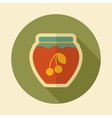 Cherry jam jar retro flat icon with long shadow vector image