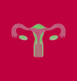 flat shading style icon female reproductive system vector image vector image
