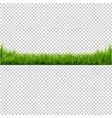 green grass transparent background vector image vector image