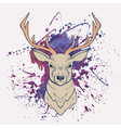 Grunge deer with watercolor splash