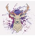 grunge of deer with watercolor splash vector image vector image