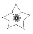 isolated flower image vector image vector image