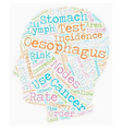 Oesophagus Cancer text background wordcloud vector image vector image