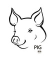 pig head portrait isolated vector image