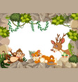 wild animal on nature template vector image vector image