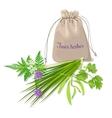 Fines herbes sachet vector image