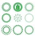 Set of Green Circle Floral Frames vector image