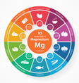 10 foods high in magnesium vector image