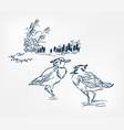 bird pond japanese sketch engraved chinese vector image