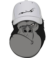Funny monkey hat vector image vector image