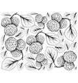 hand drawn of chinese mulberries on white backgrou vector image