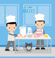 boy chef cook bakery dessert room shop vector image