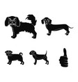 dog animal domestic and other web icon in black vector image