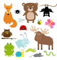 Forest animal insect set Bear hare fox moose owl vector image vector image