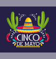 hat with cactus plants to mexican event vector image vector image