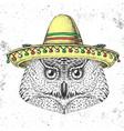 hipster bird owl wearing a sombrero hat vector image