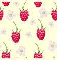 seamless pattern raspberries in bloom vector image