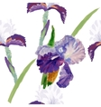 Seamless pattern with watercolor irises-01 vector image vector image
