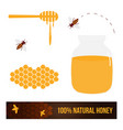 set collection of bees honey products vector image