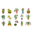 set cute cactus and succulents for cards vector image vector image