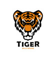 tiger head mascot wild tiger vector image vector image