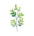 cartoon abstract green plant icon vector image vector image