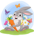 cartoon rabbit holding a carrot in grass vector image vector image