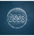 CSS3 icon vector image