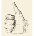 Like Thumb Up Hand Drawn Sketch vector image