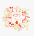 mango fruit banner template hand drawn vector image