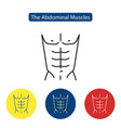 the abdominal muscles fit icon vector image