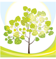 tree with green leaves sunny day vector image vector image