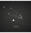 Astrology sign Taurus on chalkboard background vector image