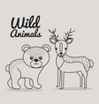 hand drawn bear and deer uncolored wild animals vector image