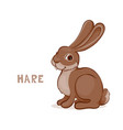 a cartoon cute hare isolated on a white vector image