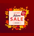 autumn sale banner with square frame fall leaves vector image vector image