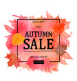 autumn sale discount banner vector image vector image