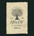banner with olive tree and olive oil labeled vector image vector image