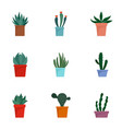 cactus pot icon set flat style vector image