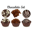 Chocolate in brown cups vector image vector image