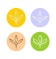 oats ears or other cereal plants logo set grain vector image vector image