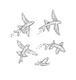 set flying fish jumping dive and swim vector image
