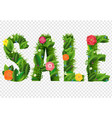 summer sale poster and grass and flowers vector image