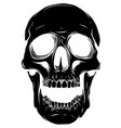 black silhouette a human skull vector image vector image