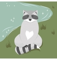 Cute sitting raccoon vector image