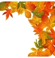 Frame with colored autumn leaves vector image vector image