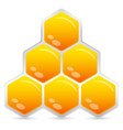 honeycomb element emblem isolated vector image