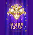 mardi gras venetian mask brazil carnival vector image